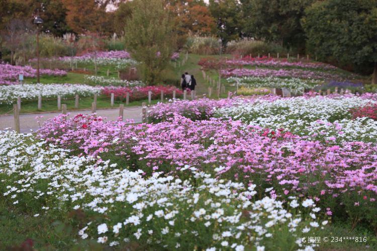 Umami-kyuryo Park2