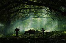 【面の旅行】霞浦--中国最美滩涂,摄影师的梦想之地