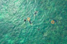 【面の旅行】潜入古达的海里,去无人岛探险
