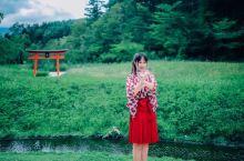 「日本必游景点」忍者村,与忍者零距离接触