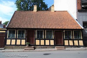 Odense,Recommendations