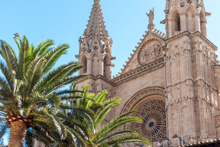 馬略卡島帕爾馬大教堂1