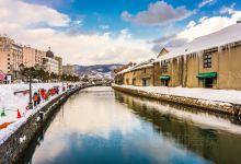 《情书》取景地,北海道5日温泉滑雪游