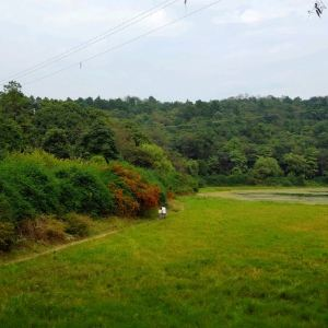 长坡岭森林公园旅游景点攻略图