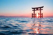 变漂亮、变有钱、远离渣男···还有什么是日本神社不能求的?