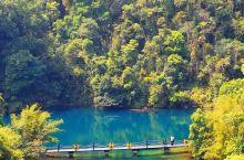 迷人的鼎湖山,来清凉一夏吧!