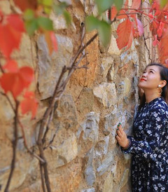 [古北水镇游记图片] 北京秋游好去处,古北水镇的秋天,有醉美的红叶