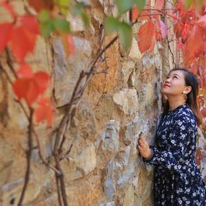 古北水镇游记图文-北京秋游好去处,古北水镇的秋天,有醉美的红叶