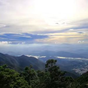 梧桐山旅游景点攻略图
