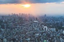在晴空塔的最顶端和你看尽日落繁灯