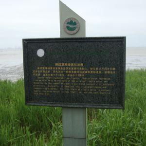 崇明岛国家地质公园旅游景点攻略图