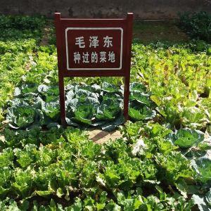 杨家岭革命旧址旅游景点攻略图