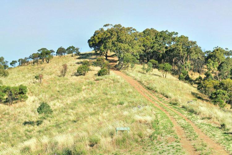 Black Hill Conservation Park