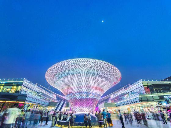 Shanghai Expo Park