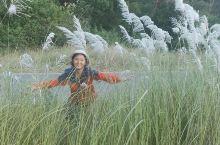 泰国自驾游第十一天:大城~芭提雅
