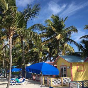 Paradise Island,Recommendations