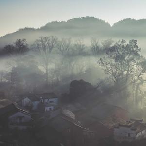 石城游记图文-谁说世间秋意要伤悲——到没有油菜花的婺源看深秋红枫