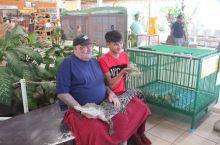 """""""是拉差""""龙虎园里的鳄鱼和老虎 从曼谷回芭迪雅途中,我们参观了""""是拉差""""龙虎园。去之前导游说不仅可以"""