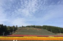 七星山,遠處禿禿的地方原來是薰衣草田,現在已經沒有了薰衣草,准备迎接冬天的来临,摇身变成滑雪胜地