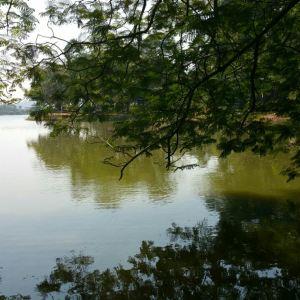 贝拉湖旅游景点攻略图