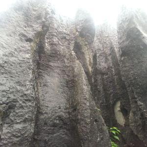 思南石林旅游区旅游景点攻略图