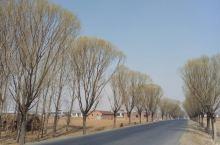 阜新蒙古族自治县