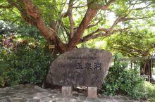 玉泉洞 玉泉洞,喀斯特岩溶地貌洞穴,在冲绳岛算是比较稀有的景观。 洞穴外面,通过园林化设计,完全是一