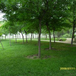 河滨公园旅游景点攻略图