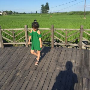 渤海风情园旅游景点攻略图