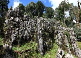 二滩国家森林公园旅游景点攻略图