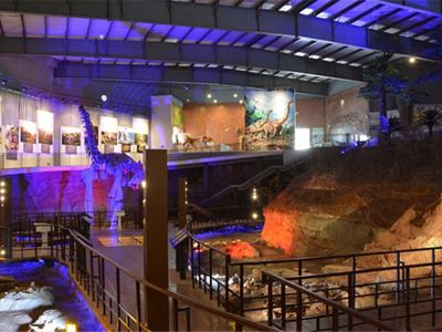 Ruyang Geopark of Dinosaur Fossil Group