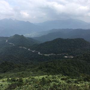 三桠塘幽谷旅游景点攻略图