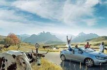 国内最棒的自驾路线,亲们儿按需自取。