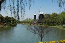 郁金香的世界 春日鲜花港