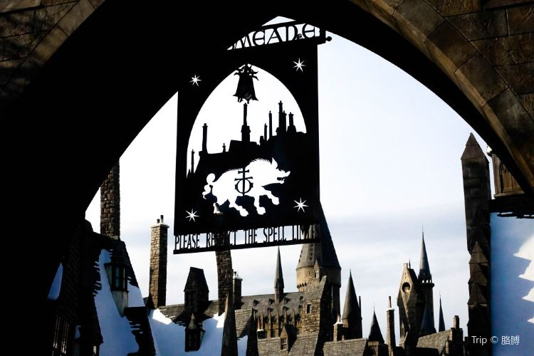 The Wizarding World of Harry Potter4