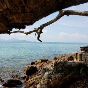 中央海滩旅游景点攻略图
