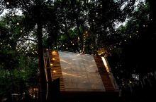 人猿泰山的家#神奇的酒店