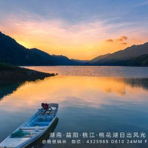 湖南桃花江国家森林公园旅游景点攻略图