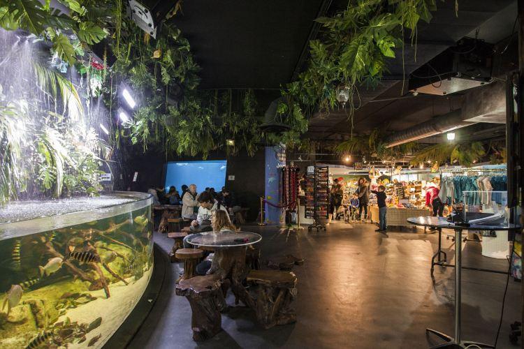Aquarium de Paris3