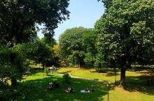 纽约中央公园  纽约的后花园