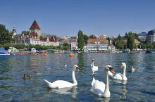 瑞士最迷人的季节!