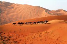 大漠胡杨旅游区额济纳旗——巴丹吉林沙漠篇