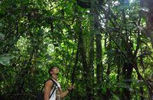 (长篇8)亚马逊是自然的大宝库 我只是进去偷看了一眼