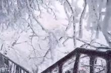 快来张家界玩雪吧
