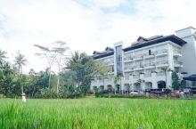 #神奇的酒店#婆罗浮屠边的豪华酒店
