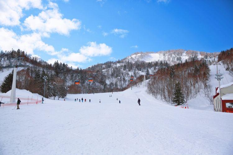 Sapporo International Ski Resort4