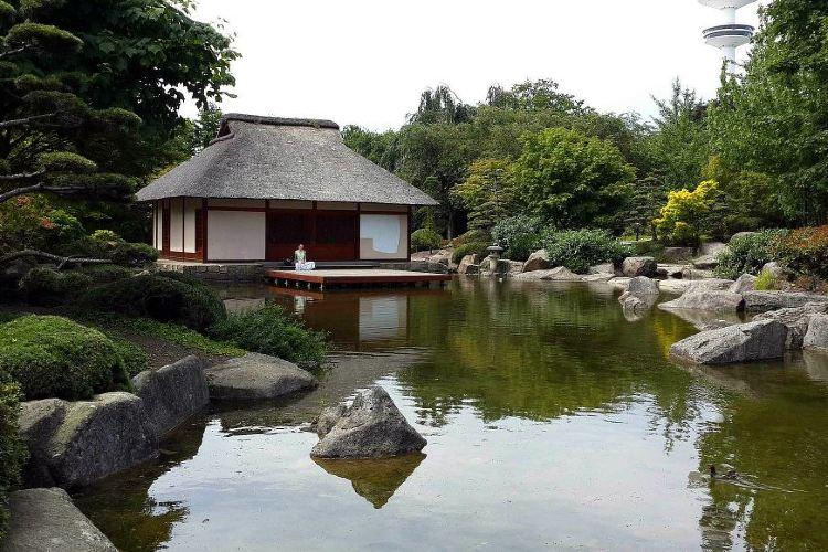 花卉植物園4