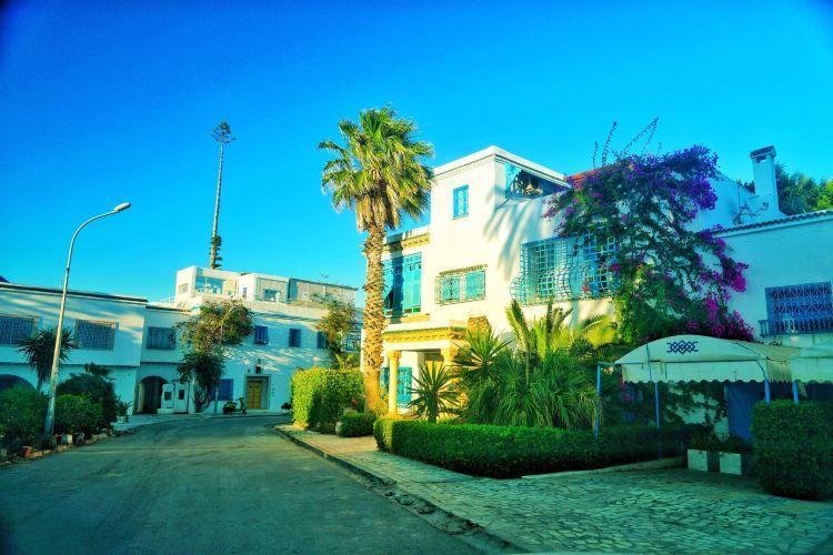 突尼斯舊城區4