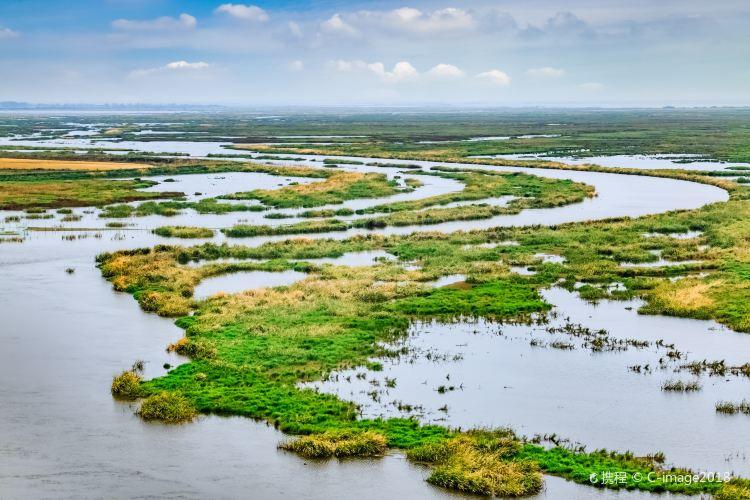 雁窩島濕地生態旅遊區1