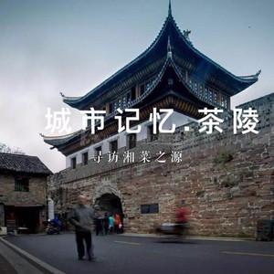 茶陵游记图文-城市记忆丨一顿官府菜,一场茶陵情,寻访湘菜之源